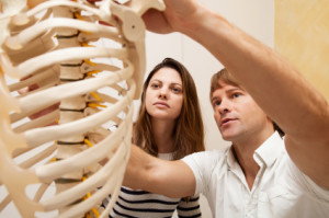 Your Physical Therapy Career and Other Related Professions